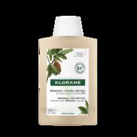 Klorane Beurre Cupuaçu Bio Shampoing Cheveux Très Secs 200ml à Dijon