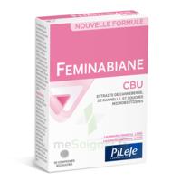 Pileje Feminabiane Cbu 30 Comprimés Bicouches à Dijon