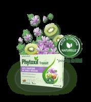 Phytoxil Transit Comprimés B/20 à Dijon