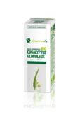 Huile Essentielle Bio Eucalyptus Globuleux à Dijon