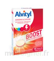 Alvityl Boost Comprimés B/20 à Dijon