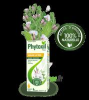 Phytoxil Toux Sans Sucre Sirop Adulte Enfant +2 Ans Fl/120ml à Dijon